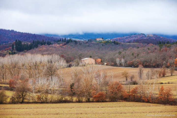 Image showing a mist hanging over rolling hills in tuscany winter landscape siena reds burnt sienna yellow ochre cobalt blue and cypress green colouring