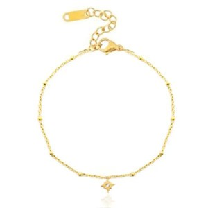 Roestvrij stalen (RVS) Stainless steel armbanden lucky star goud