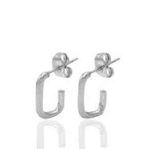 Roestvrij stalen (RVS) Stainless steel oorbellen/oorstekers zilver