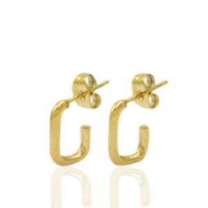 Roestvrij stalen (RVS) Stainless steel oorbellen/oorstekers goud