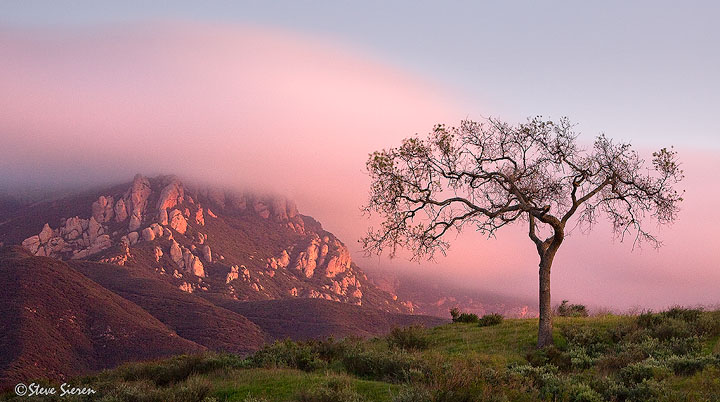 Coastal Fog crawls into the Conejo Valley as spring begins.  Conejo Valley