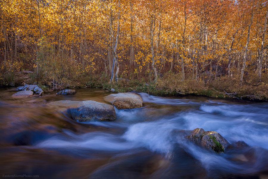 More Eastern Sierra in Fall