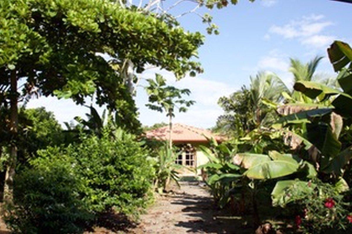 Villa Kokopelli Sierpe, wildlife mangrove tour