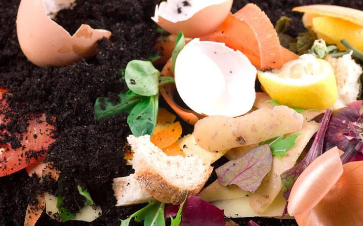 Best Garden Soil Mix
