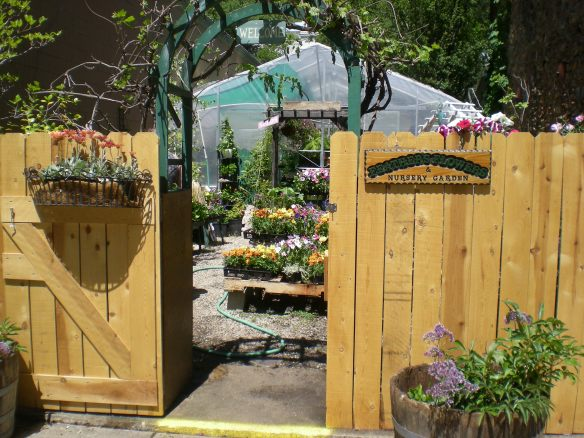 Feather's Flowers is open again.. start sprucing up your yard, hanging plants and flowers...