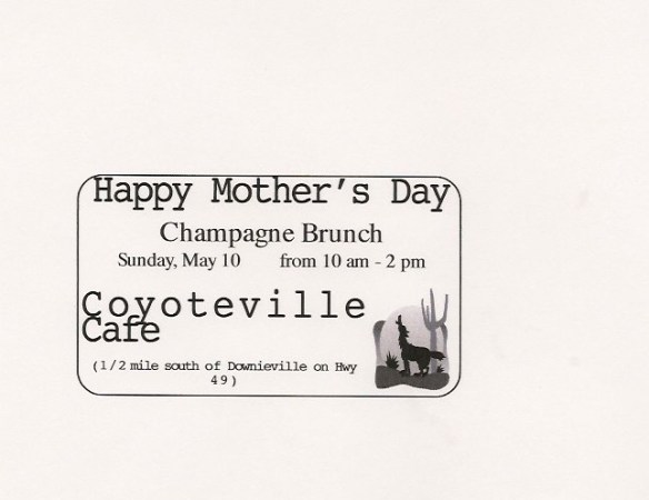 Coyoteville mother