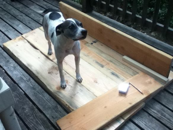 and I'm supposed to do what? Did you build your own dog house?? I think not... Barkley Guffin