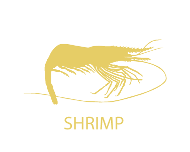 Shirmp