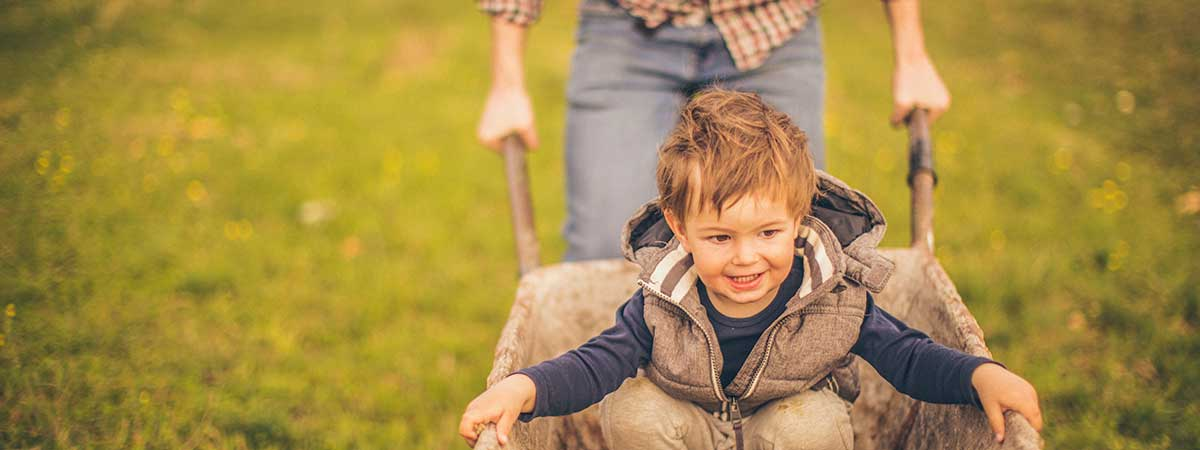Boy pushed in wheelbarrow
