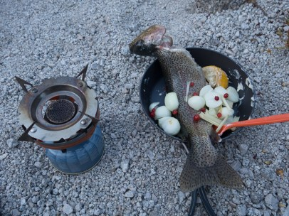 1 Titanium skillet, 2 tbs butter, vidalia onions, garlic, lemon, salt, pepper, and wild gooseberries from camp.