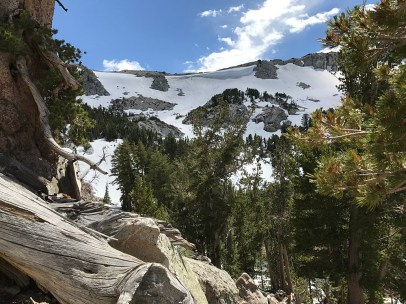 Mammoth Crest snowboarders on July 16