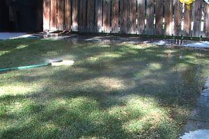 flooded_lawn2.jpg