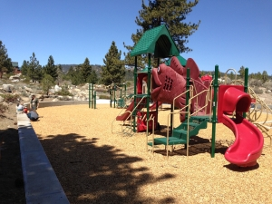 Trails End Park Playground_fish