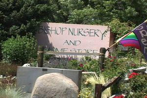 bishop nursery 2