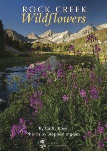 Rock Creek Wildflowers cover