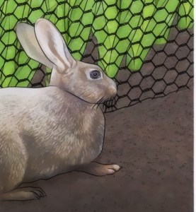 A simple wire fence can keep hungry Rabbits out of your garden.