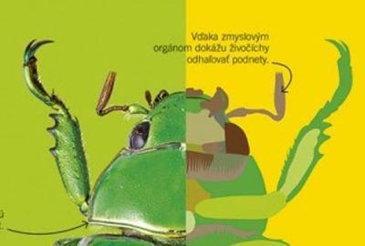 Superjednoduchá biológia