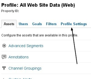 remove all web site data from google analytics