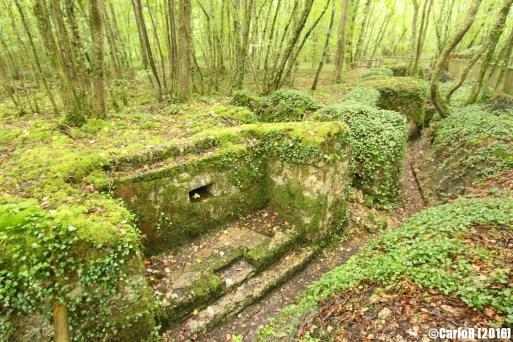 Saint Mihiel Salient Bois Brulé Bavarian Trenches
