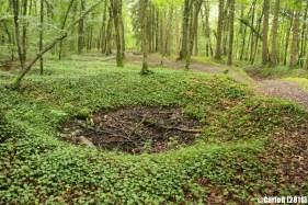 Saint Mihiel Salient Bois d'Ailly