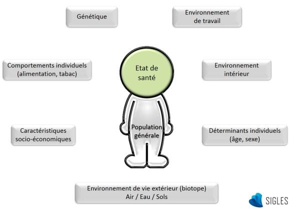 La génétique, les comportements individuels, les déterminants individuels (âge, sexe), les caractéristiques socio-économiques, l'environnement de travail, l'environnement intérieur et l'environnement de vie extérieur (air, eau, sol) sont les principaux déterminants de la santé.