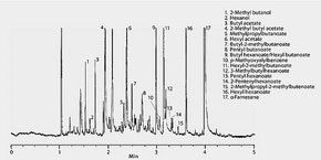 GC Analysis of Stored Apples on 5% Phenyl Column after