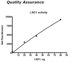 LSD1 Active human recombinant, expressed in E. coli, ≥70%