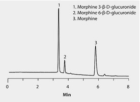 HPLC Analysis of Morphine and Glucuronide Metabolites on