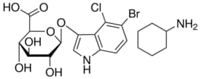 X-GlcA reagent for selection of recombinant bacterial