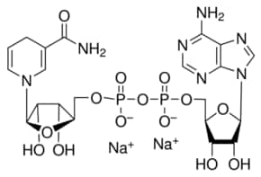 β-Nicotinamide adenine dinucleotide, reduced disodium salt
