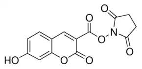 7-Hydroxycoumarin-3-carboxylic acid N-succinimidyl ester