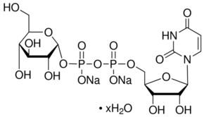 Uridine 5′-diphosphoglucose disodium salt hydrate from