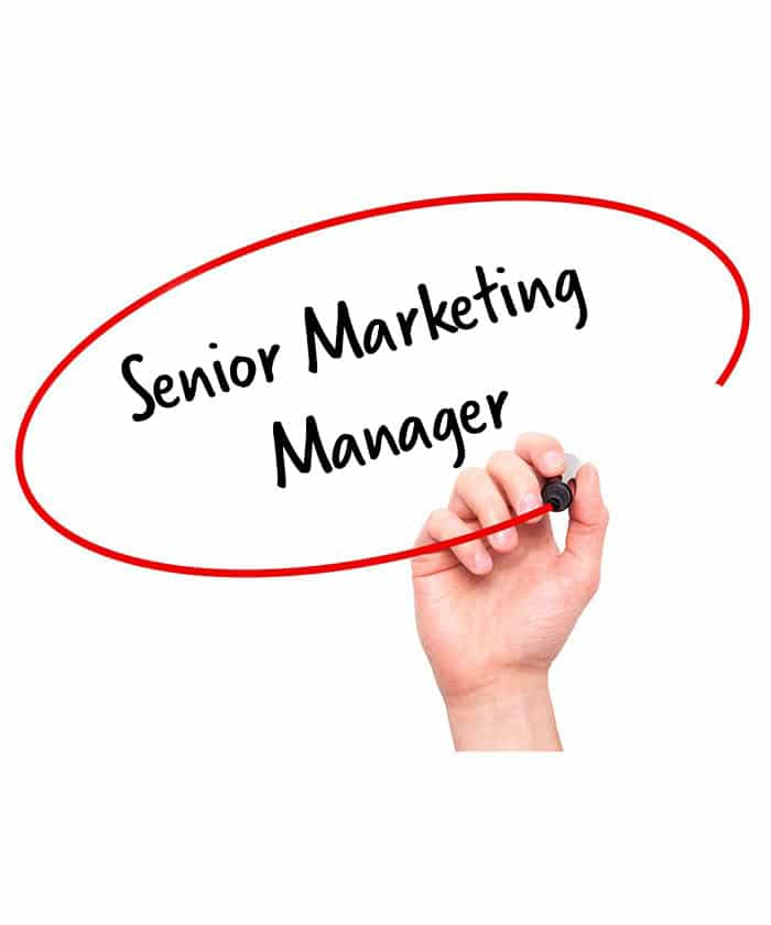 Senior Marketing Manager Job Description  HR Services Online