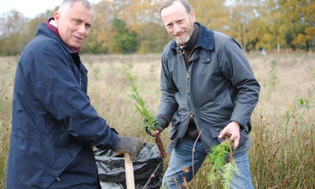 Antalis to offer universal carbon offsetting