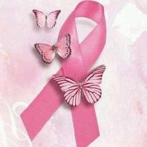 lazo rosa, símbolo de la lucha contra el cáncer