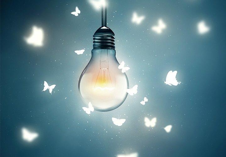 algunos insectos se ven atraídos por la luz