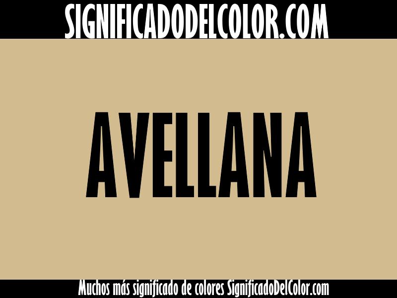 Cual es el color Avellana ▷【Como es el color Avellana + Ejemplo】
