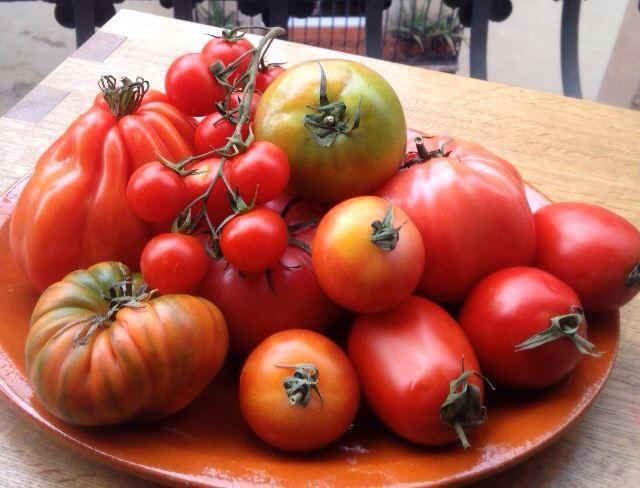esta verdura da nombre a la variedad de color del rojo