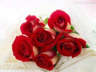▷ Sonhar com Rosas【INTERPRETAÇÕES REVELADORAS】