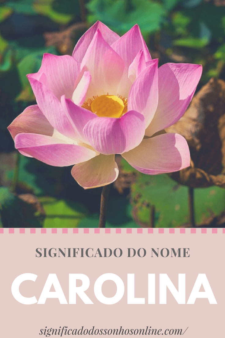 ▷ Significado do nome Carolina【Tudo sobre Carolina】