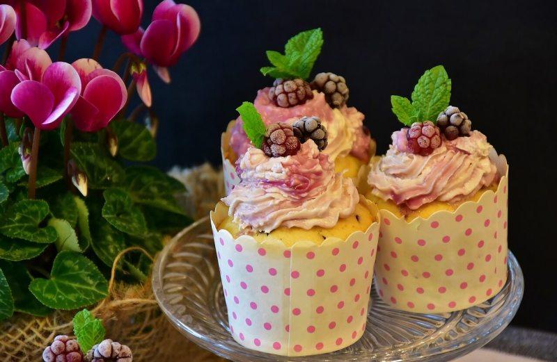 lucrar vendendo cupcake em casa