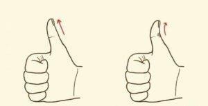 Como é o Seu Polegar?Descubra o Que Seu Polegar Diz Sobre Você