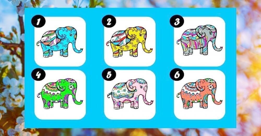 Escolha o Seu Elefante Favorito e Receba Uma Mensagem De Prosperidade