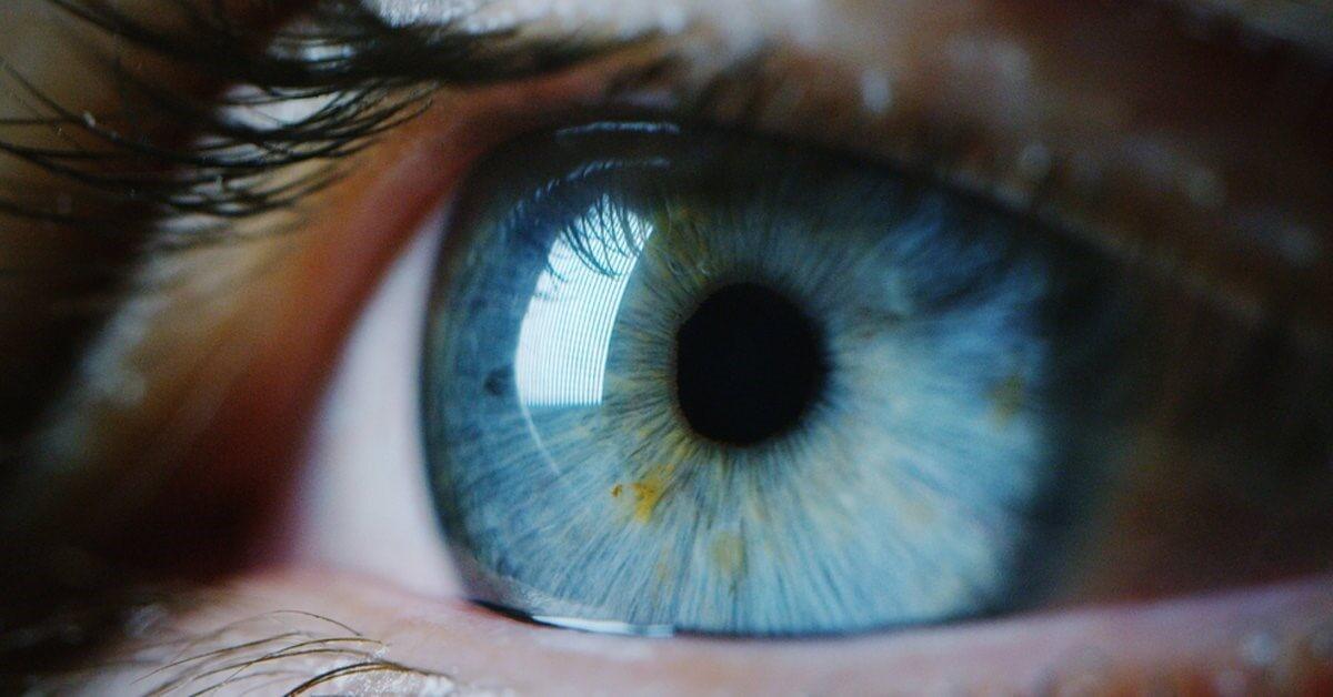 Seus Olhos Revelam Os Aspectos Mais Importantes Da Sua Personalidade! Como Seus Olhos São?