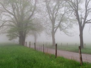 """Leia Essa Breve Reflexão Que Vai Mudar Seu Dia: """"A tempestade passará…"""""""