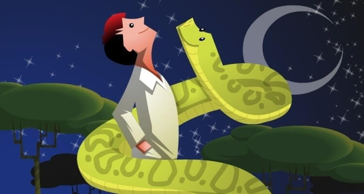 sonhar com cobra grande