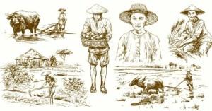 A parábola do fazendeiro, uma história chinesa que devemos ler antes que algo ruim aconteça conosco novamente