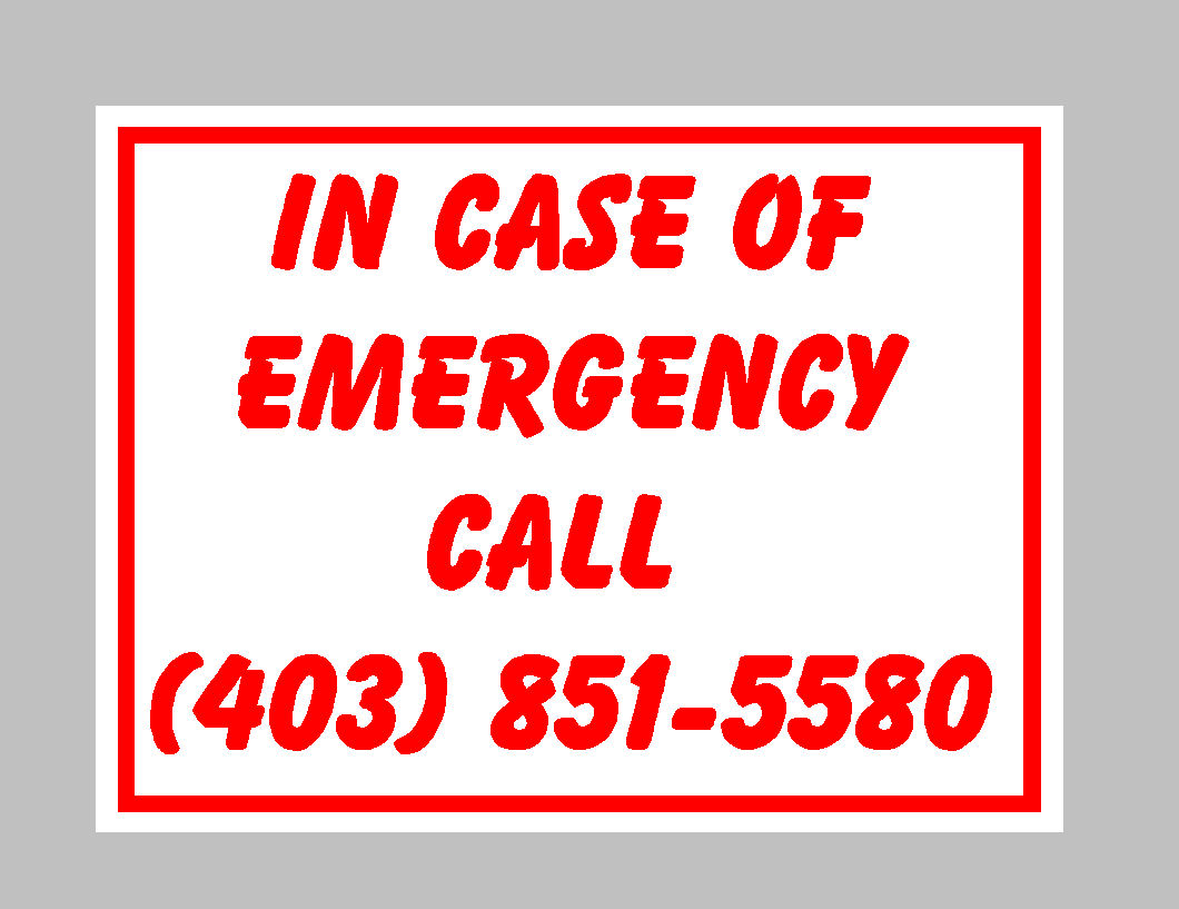 Journal Of Sign Designs And Proofs In Case Of Emergency Sign