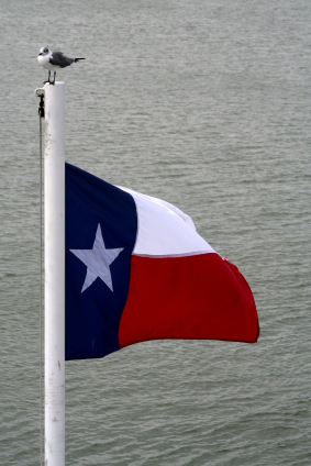 TX Flags Nylon Polyester