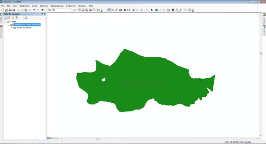 zoom sur une forêt publique dans arcmap